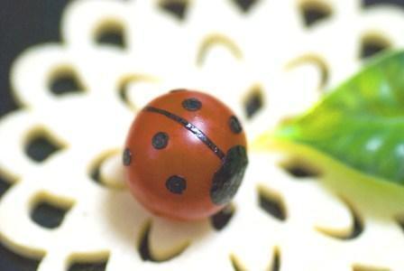 ミニトマトのてんとうむし – とまとが春キャラ天道虫に♪