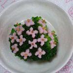 ブロッコリーのあじさい – 梅雨のジトジト季節は紫陽花で華やかに